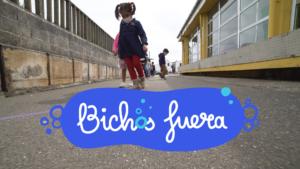 Imagen de campaña Bichos fuera
